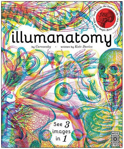 30504 Illumanatomy