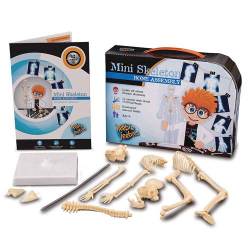 Heebie Jeebies Science Kit - Mini Skeleton (6+ yrs)