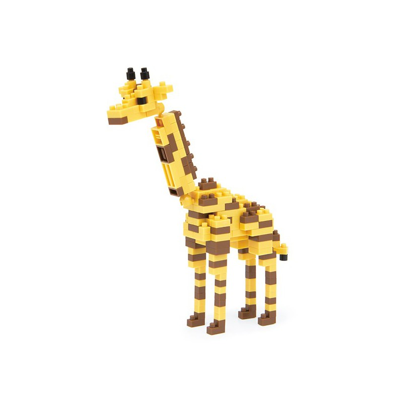 nbc 094 giraffe2