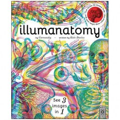 30504_Illumanatomy