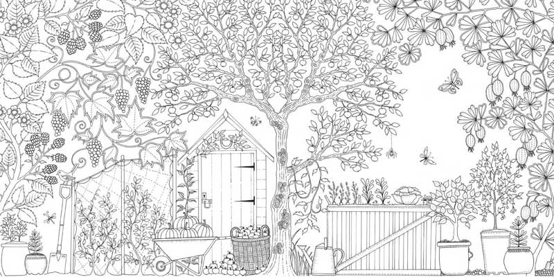 Secret Garden An Inky Treasure Hunt Colouring Book By Johanna Basford