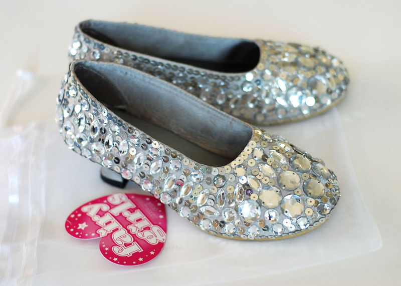 Glass Slippers (Small)